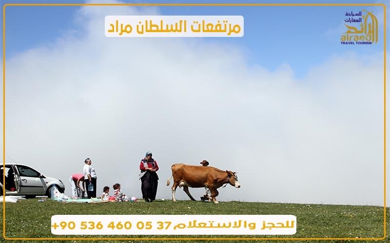 برنامج سياحي في طرابزون تركيا