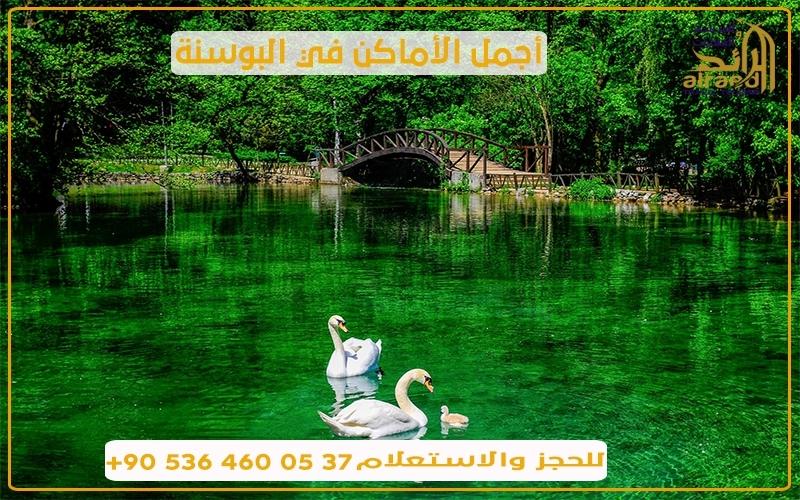برنامج سياحي في البوسنة سائق عربي